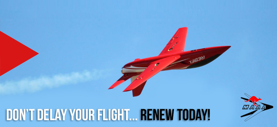renew today banner july 19